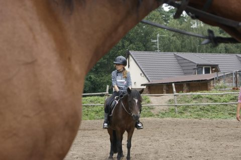 Obozy konne lato 2012 - Horse riding camps Summer 2012